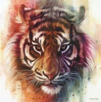 ben-jeffery---eye-of-the-tiger