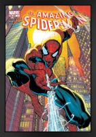 the-amazing-spider-man-491_fr