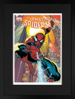 the-amazing-spider-man-491_giclee-fr