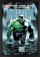 the-incredible-hulk-77---tempest-fugit_fr