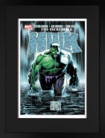 the-incredible-hulk-77---tempest-fugit_giclee-fr